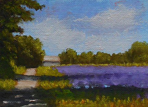 Fred Wilson - Bit of Lavender