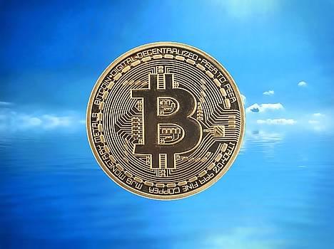 Bitcoin Revolution by Chris Montcalmo