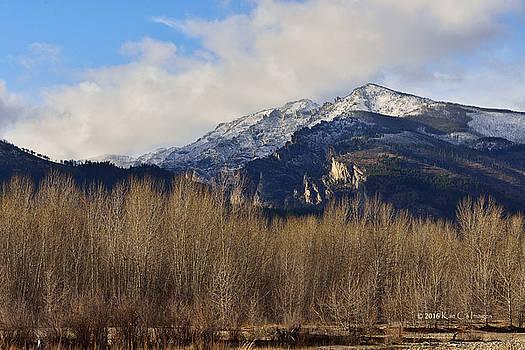 Bitterroot Mountain Peak  by Kae Cheatham