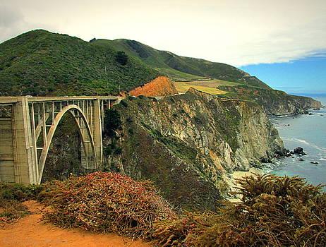 Joyce Dickens - Bixby Creek Bridge Big Sur CA II