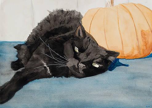 Black And Orange by Marcella Morse