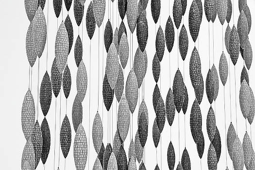 Black and White and Gray Cones hanging from strings light gray background 2 972017 by David Frederick