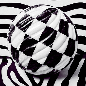 Black And White Ball by Garry Gay
