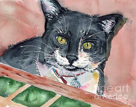 Black And White Cat by Maria's Watercolor