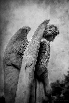 Black and White Cemetery Guardian Angel Wings by Melissa Bittinger