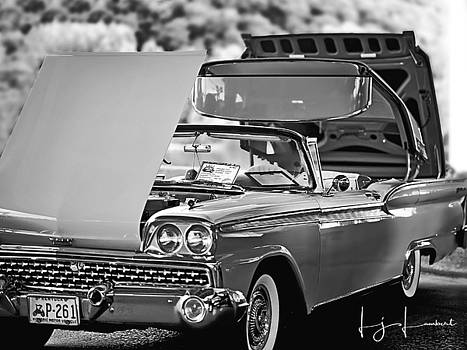 Black and White Classic by Lj Lambert