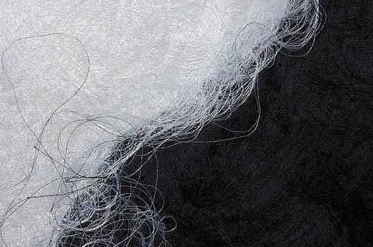 Black and white fibers - yin and yang by Matthias Hauser
