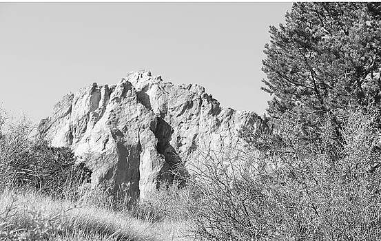 Black and White Garden of the Gods Colorado 2 10232017  by David Frederick