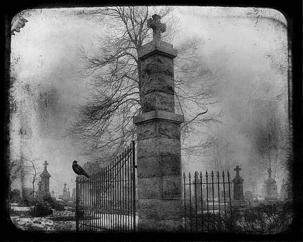 Black And White Graveyard Gate Watching Crow by Gothicrow Images