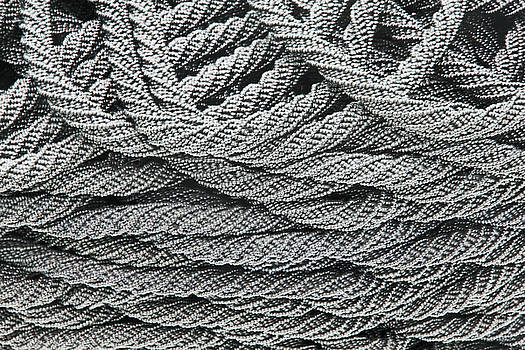 Black and White Gray Ropes of Pearls Basket Weaves Loops 2 8292017  by David Frederick