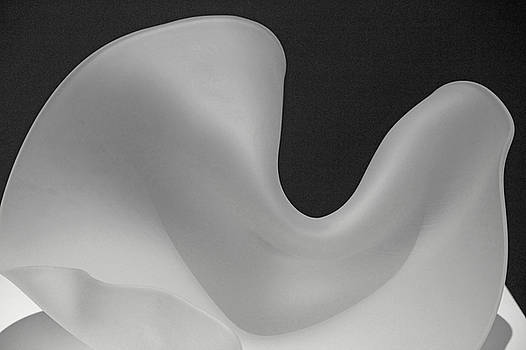 Black and White Grays Curves Swirls Shadows 2 8292017 by David Frederick