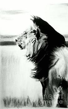 Black and White Lion by Bonnie Cushman