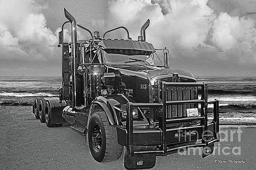 Black and White Logger by Randy Harris