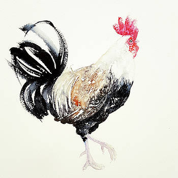 Black and White rooster by Arti Chauhan