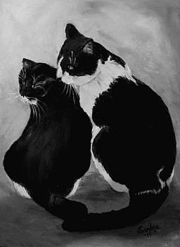 Black and White  by Sandra Maddox