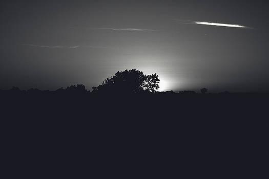 Black and White Sunset by William Cruz