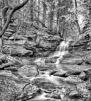 Black and White Water Falls by Brian Mollenkopf