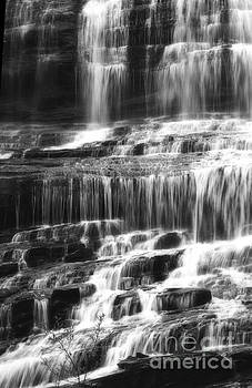 Jill Lang - Black and White Waterfall