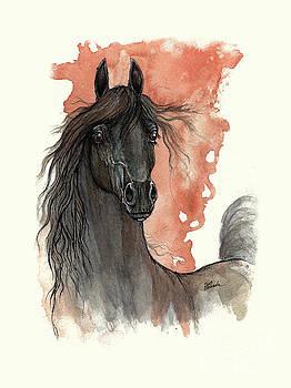 Angel Tarantella - Black arabian horse 2013 11 13