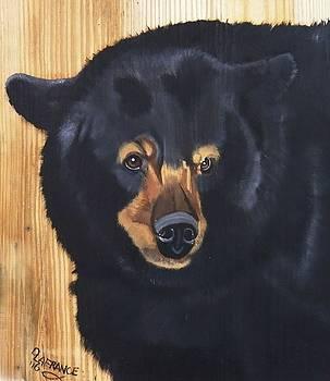 Black Bear 2 by Debbie LaFrance