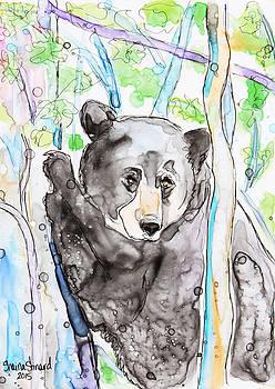 Black Bear on The Bruce by Shaina Stinard