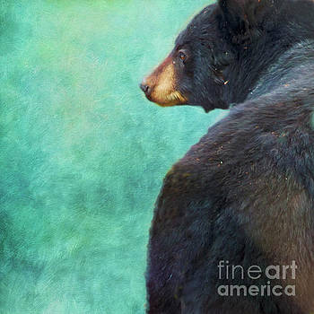 Black Bear's Bum by Priska Wettstein