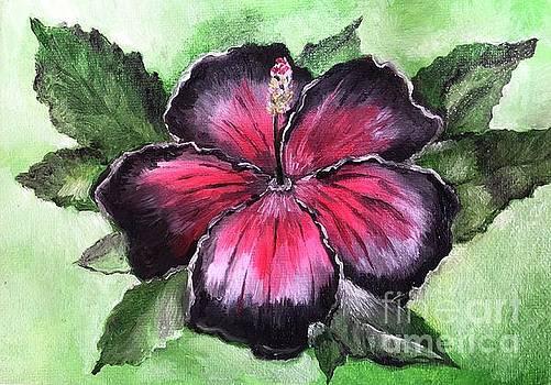 Black Beauty Hibiscus by Jacalyn Hassler Yurchuck