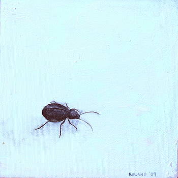 Black Beetle by Genevieve Smith