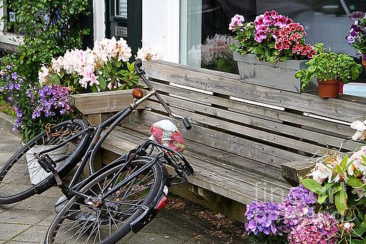 Black Bike Among Flower Pots by Julia Willard