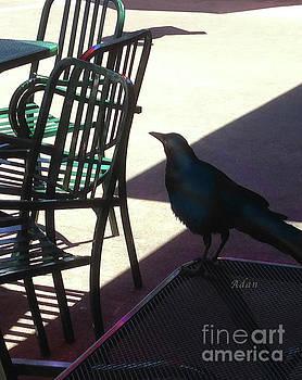 Felipe Adan Lerma - Black Bird at Central Market Vertical