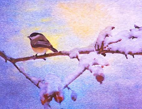 Black Cap Chickadee Winter Twilight by Daphne Sampson