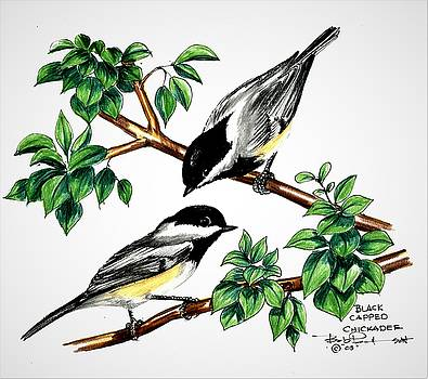 Black Cap Chickadees by Bob Patterson