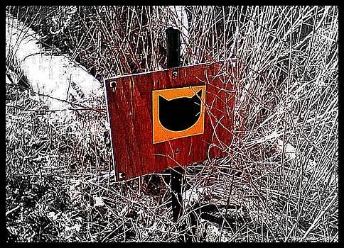 Peter Ogden - Black Cat Crossing