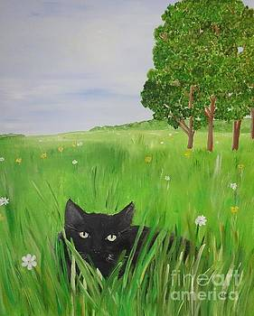 Black cat in a meadow by Karen Jane Jones
