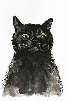 Black Cat by Masha Batkova