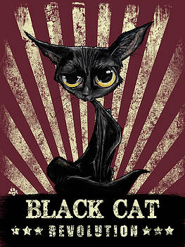John LaFree - Black Cat Revolution