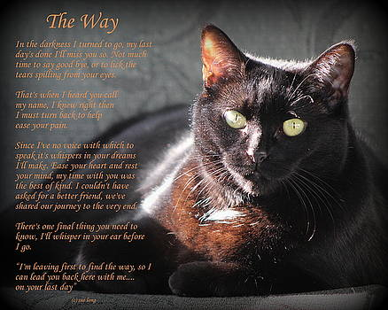 Black Cat The Way by Sue Long