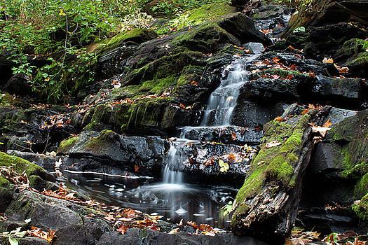 Black Creek Falls in Autumn, 2016 by Jeff Severson