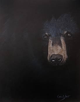 Black danger by Jean Yves Crispo