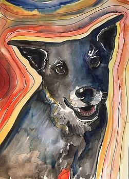 Black Dog by Kathryn Armstrong