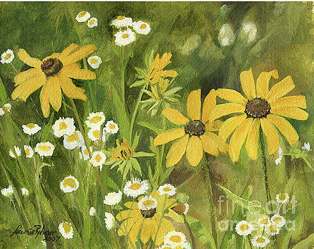 Black-eyed Susans in a Field by Laurie Rohner