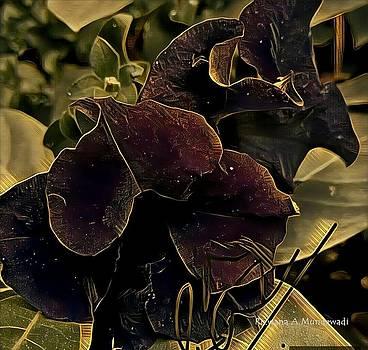 Rizwana Mundewadi - Black Flower Luck