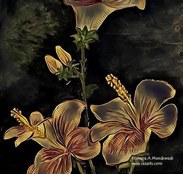 Rizwana A Mundewadi - Black Golden Hibsicus