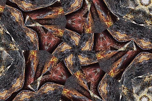 Black Granite Star Kaleido by Peter J Sucy