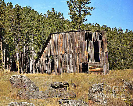 Black Hills Barn by Kathy M Krause