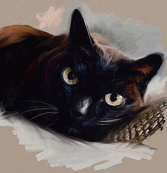 Black Kitty by Shelley Hanna