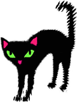 Black Kitty White background by Cheryl Hall