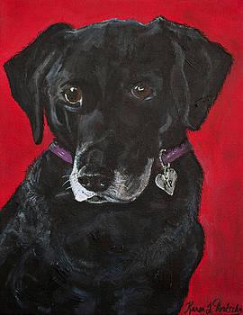 Miss Priss the Black Labrador Retriever Mix by Karen Dortschy