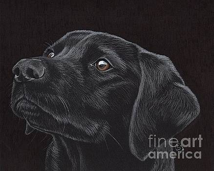 Black Labrador Retriever - Loyal Companion by Sherry Goeben