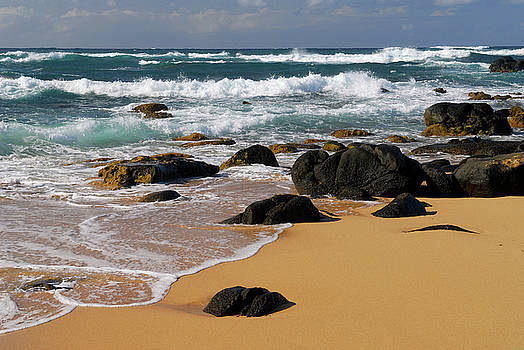 Reimar Gaertner - Black lava rocks and waves on Moomomi Beach Molokai